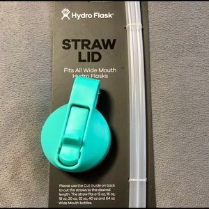 Hydro flask Mint Wide Mouth Straw Lid, Brand New